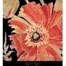 Oreintal Poppy Fine Art Print By Roberta Ahrens At