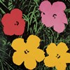 Flowers, 1964  (1 red, 1 pink, 2 yellow)