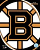 Boston Bruins 2011 Team Logo