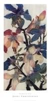 Magnolias XIII Fine Art Print