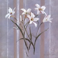 Stripes and Lilies Fine Art Print