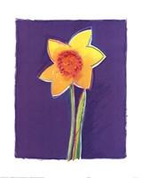 Daffodil Fine Art Print