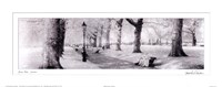 Green Park London Fine Art Print