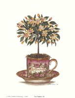 Tea Topiary #6 Fine Art Print