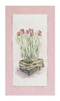 Tulips Fine Art Print