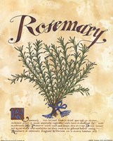 Rosemary Framed Print