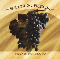 Bonarda, Piemonte Fine Art Print