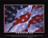 Patriotic-Freedom Fine Art Print