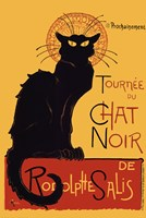 Chat Noir Framed Print