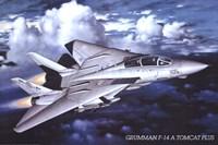 Grumman F-14 Tomcat Wall Poster