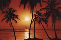 Caribbean Sunset Wall Poster