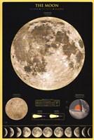 Moon Fine Art Print