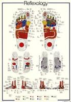 Reflexology Fine Art Print