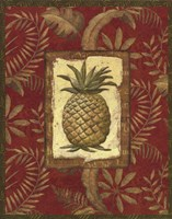 Exotica Pineapple Framed Print