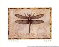 Dragonfly III Framed Print