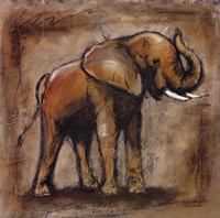 Safari Elephant Fine Art Print