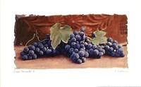 Grape Harvest I Framed Print