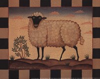 Farm Sheep Fine Art Print