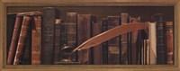 Librairie II Framed Print