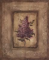 Grand Savin Lilac Fine Art Print