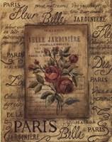 Bel Bouquet II Framed Print