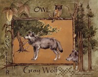 Gray Wolf Fine Art Print