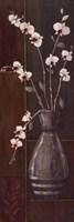 Delicate Orchids I Fine Art Print