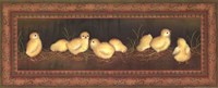 8 Chicks Framed Print