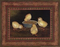 Chicks with Seed Framed Print