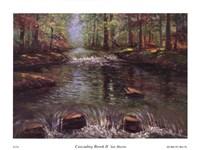 Cascading Brook II Fine Art Print
