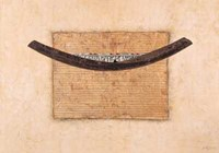 Egyptian Papyrus Fine Art Print