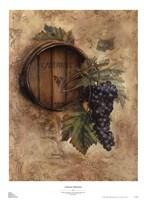 Cabernet Selections Fine Art Print