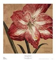 Blooming Wonder I Fine Art Print