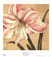 Blooming Wonder II Fine Art Print