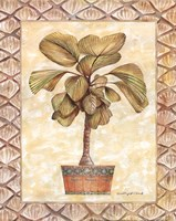 Palm Tree I Fine Art Print