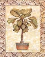 Palm Tree I Framed Print