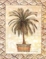 Palm Tree II Framed Print