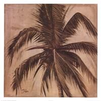 Sepia Palm III Fine Art Print
