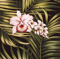 Tropical Bouquet III Framed Print