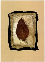 Kyoto Leaves III Fine Art Print