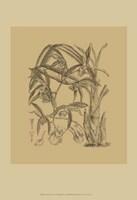 Orchid on Khaki(WG) I Fine Art Print