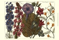 Printed Arena Botanical IV Fine Art Print