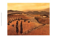 Golden Tuscany Afternoon I Framed Print