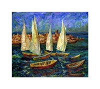 Sails in the Bay Fine Art Print