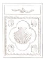 Shell Panel Fine Art Print