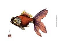 Oriental Fish II Framed Print