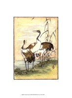 Oriental Cranes I Framed Print