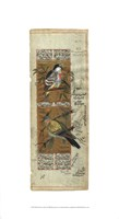 Bird Pair from India I Giclee