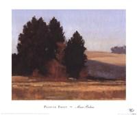 Palouse Frost Framed Print