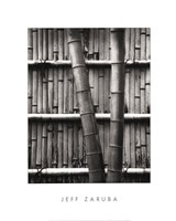 Bamboo and Wall Framed Print